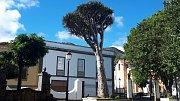 Gran Canaria.  Náměstí v městečku Teror.