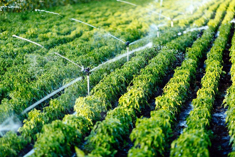 Úbytek vody je celosvětový problém