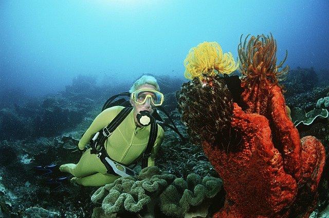 Korálový ostrov Raja Ampat.