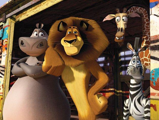 NA TOULKÁCH SVĚTEM. Lev, žirafa, hrošice a zebra stále hledají cestu zpět do zoo. V třetím pokračování se musí utkat i s výbojnou francouzskou agentkou.