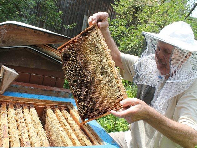 Včelaři na Blanensku letos hlásí oproti loňské sezóně úbytek medu.