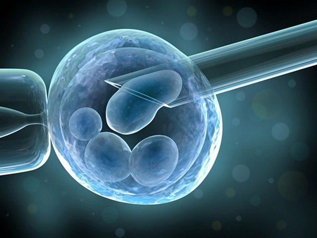 Poslanci navrhli zpřísnit podmínky pro umělé oplodnění prostřednictvím anonymního dárcovství zárodečných buněk.
