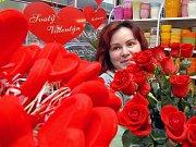 Růží není nikdy dost