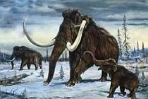 Možnost oživení vyhynulých prehistorických savců, jako jsou kupříkladu mamuti, je opět o něco pravděpodobnější. Dokazuje to výjimečná operace japonských vědců, při níž se podařilo naklonovat mrtvou myš uloženou 16 let v ledu.
