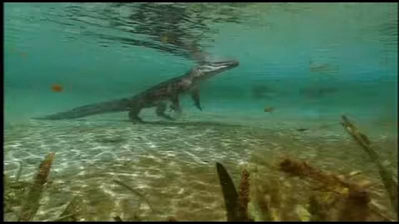 I v dnešní době si někteří krokodýli a aligátoři vypomáhají při pohybu chůzí po zadních nohách, zatímco zbytek těla nadnáší voda