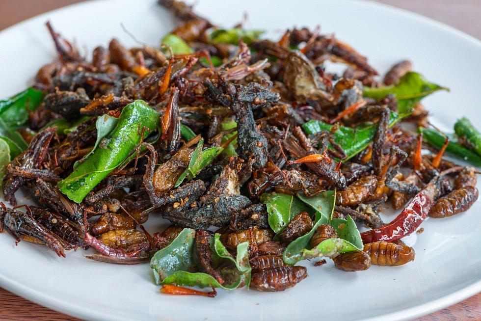 Smažený jedlý hmyz se zelenými listy limetky.
