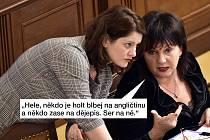 Vtipy na Janu Maláčovou připomněly i některé další zábavné momenty spojené s vládou Andreje Babiše