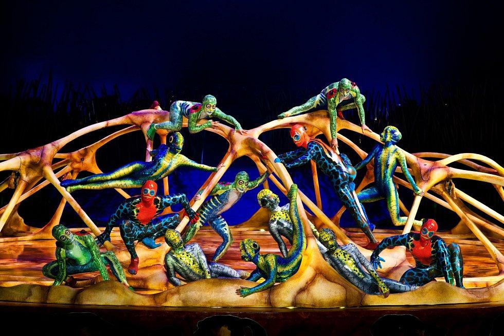 Cirque du Soleil Entertainment Group má v současné době přes 4 000 zaměstnanců, mezi které patří i 1 400 umělců z 50 zemí