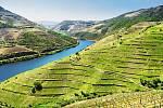 Údolí Douro. Vinice a krajina nedaleko města Pinhao, Portugalsko