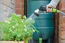 Nejvhodnější je pro rostliny dešťovka.