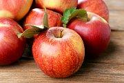 Jablka. Ilustrační snímek