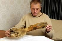 Ruský horolezec a biolog Sergej Semjonov našel chlupatou nohu. Svým nálezem oživil místní legendu o sněžném muži - yettim, ale vědci z altajského veterirárního institutu a zemědělské univerzity zjistili, že kosti jsou několik tisíc let staré.