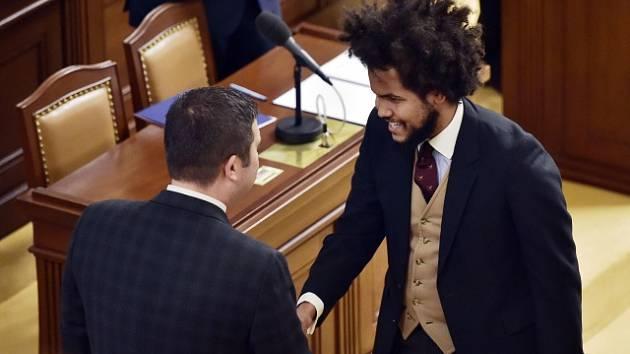 Nová Sněmovna, Dominik Feri