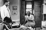 V roce 1961 ztvárnil Sidney Poitier hlavní roli v sociálním dramatu A Raisin in the Sun
