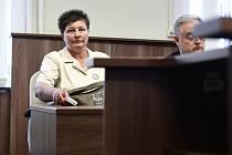 Okresní soud Praha-západ se 4. září 2019 zabýval žalobou na ochranu osobnosti, kterou podala demonstrantka Jana Filipová (na snímku) na premiéra Andreje Babiše za jeho vyjádření o tom, že lidé na loňských demonstracích iniciovaných spolkem Milion chvilek