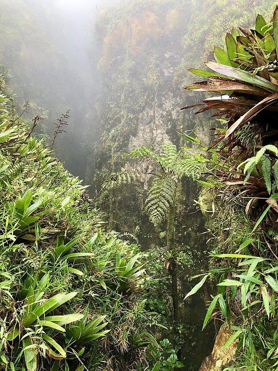 Stěny sopky La Soufriere vytvářejí spolu s deštným pralesem unikátní ekosystém