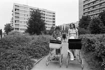 K typické nové výstavbě patřila v 80. letech panelová sídliště, zde v Mladé Boleslavi
