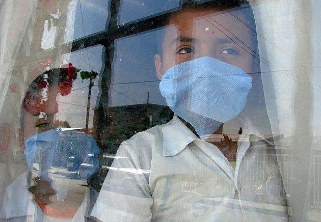 Národní referenční laboratoř pro chřipku ve čtvrtek potvrdila v Česku dvacet nových případů nákazy virem prasečí chřipky.
