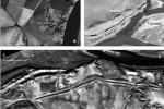Dvojice vědců narazila na zlatý důl archeologických nálezů. Díky snímkům z amerických špionážních letadel