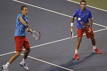 Lukáš Rosol (vlevo) a Radek Štěpánek zajistili českým tenistům postup do semifinále Davis Cupu. Vyhráli čtyřhru.