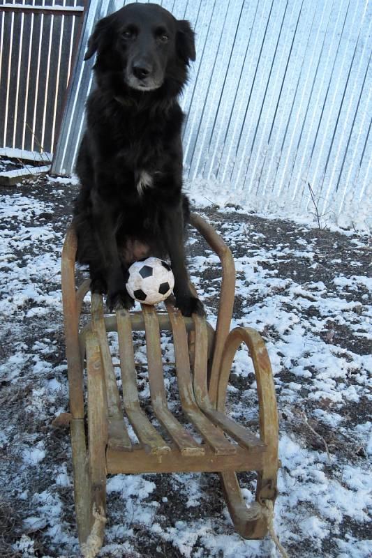 S nástupem jara nenechává fotbal nikoho klidným. Jenom je třeba zvládnout přípravu, ať na ledě či na sněhu.