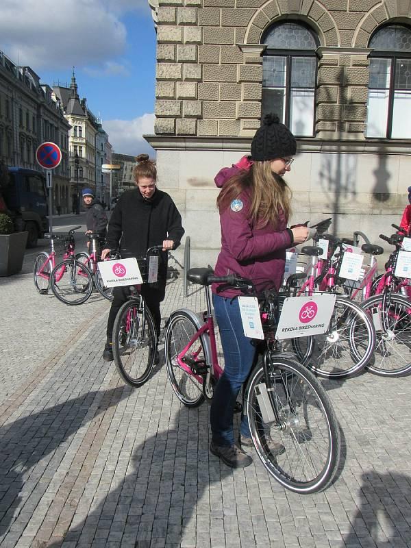 Na snímku růžová kola společnosti Rekola v Liberci.