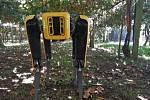 Roboty jsou schopny také sledovat dozrávání ovoce
