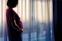 Těhotenství, ilustrační foto
