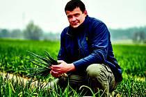Hlavní agronom Václav Tržický z Předměřic ví o cibulkách takřka všechno a mohl by o nich mluvit neustále.