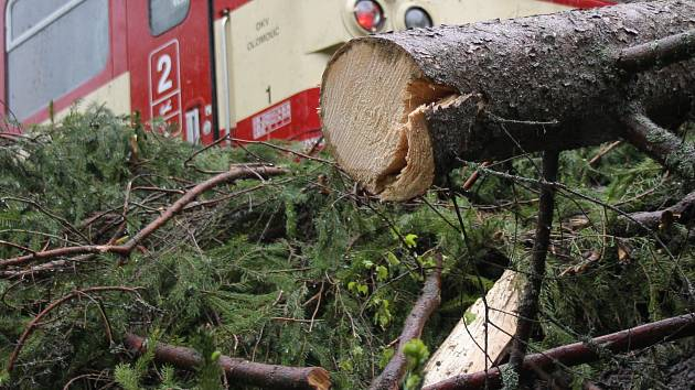 Dva stromy pokácel na koleje. Muže obžalovali z terorismu