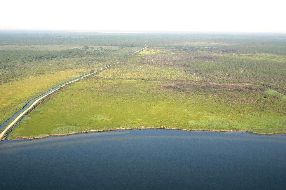 Část národního parku Aligator River National Wildlife Refuge