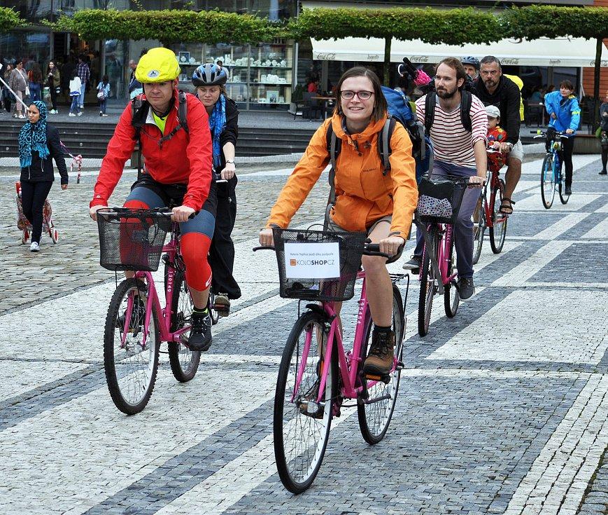 Růžová kola v Teplicích.