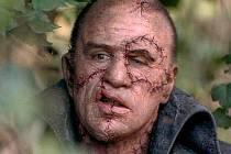 Nejslavnější. Ve 30. letech ztvárnil Frankensteinovo monstrum legendární Boris Karloff, z nejž se stala hollywoodská superstar.