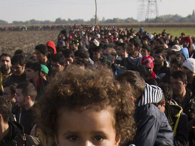 Dalších téměř 3000 migrantů přešlo od půlnoci do šesti hodin ráno zelenou hranici z Chorvatska do Slovinska. Uplynulý víkend jich prý do Slovinska dorazilo touto cestou 25.000 a množství jich pokračovalo dál do Rakouska.