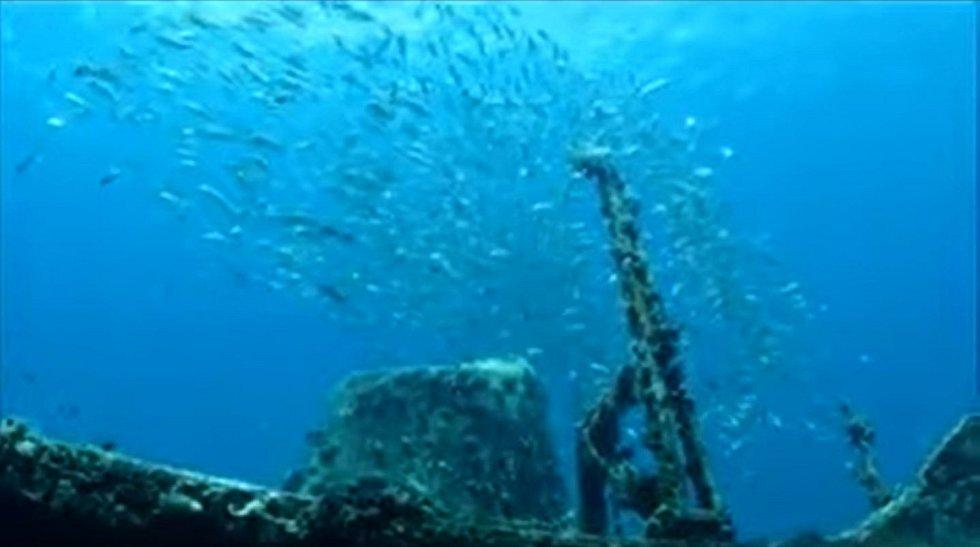Vrak trajektu Christena se v pozdějších letech stal populární potápěčskou destinací