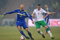 Fotbalisté Bosny a Hercegoviny (v modrém) proti Irsku.