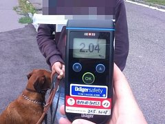 Opilý muž nechal své psy roztrhat kočku. Pak je chtěl poštvat i na strážníky.