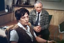 Dana Medřická ztvárnila také doktorku Fastovou v Nemocnici na kraji města