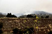 Požár v Kalifornii