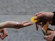 Na ulicích českých měst se zítra už poosmnácté budou prodávat kytičky proti rakovině – tentokrát s tyrkysovou mašlí a zaměřením na nádory plic. Ilustrační foto.