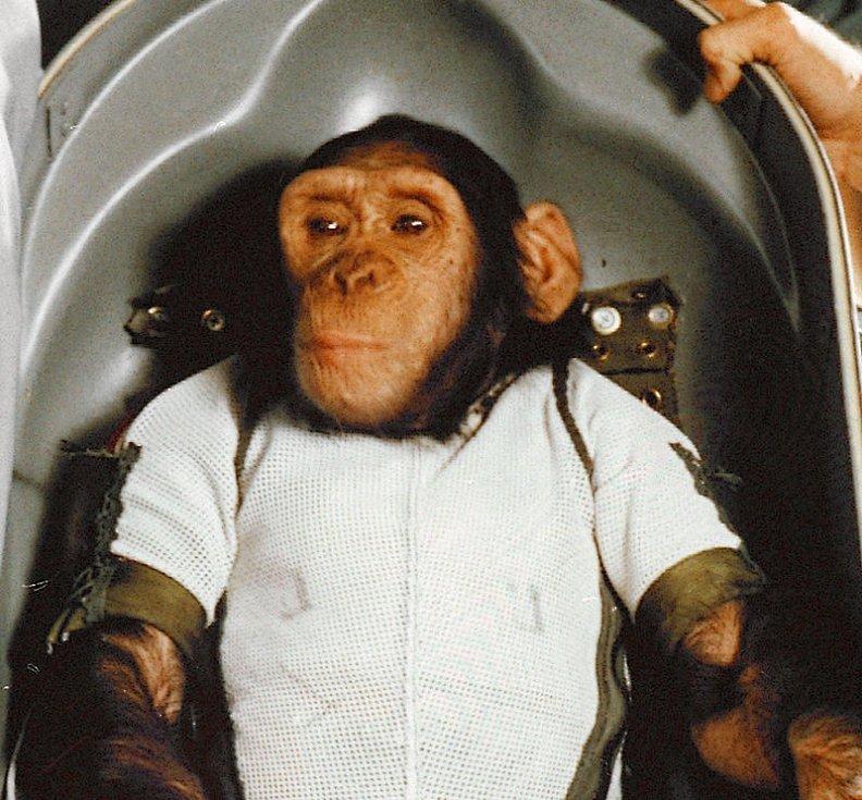 Šimpanz Ham ve speciální bio-skořepině, v níž absolvoval let