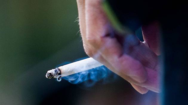 nejdelší kouření