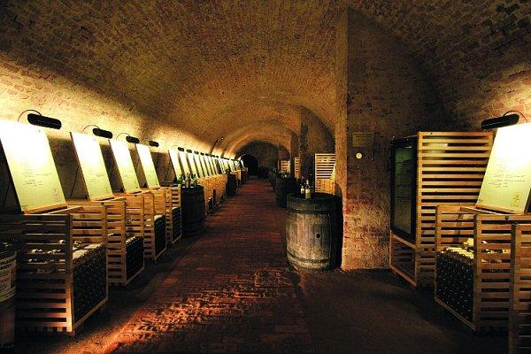 Elita našeho vinařství opět ve valtickém Salonu