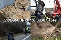 Videosouhrn Deníku – pondělí 15. ledna 2018