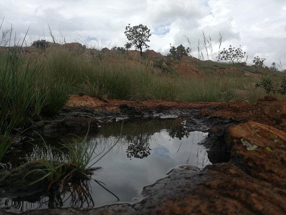 K dávné migraci lidského druhu přispělo teplejší a vlhčí klima, jež vytvořilo z jižní Afriky průchozí zelený pás se spoustou vodních jezírek