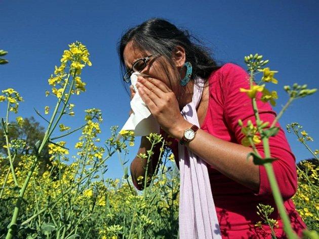 Lidí salergickou rýmou vordinacích alergologů trvale přibývá.