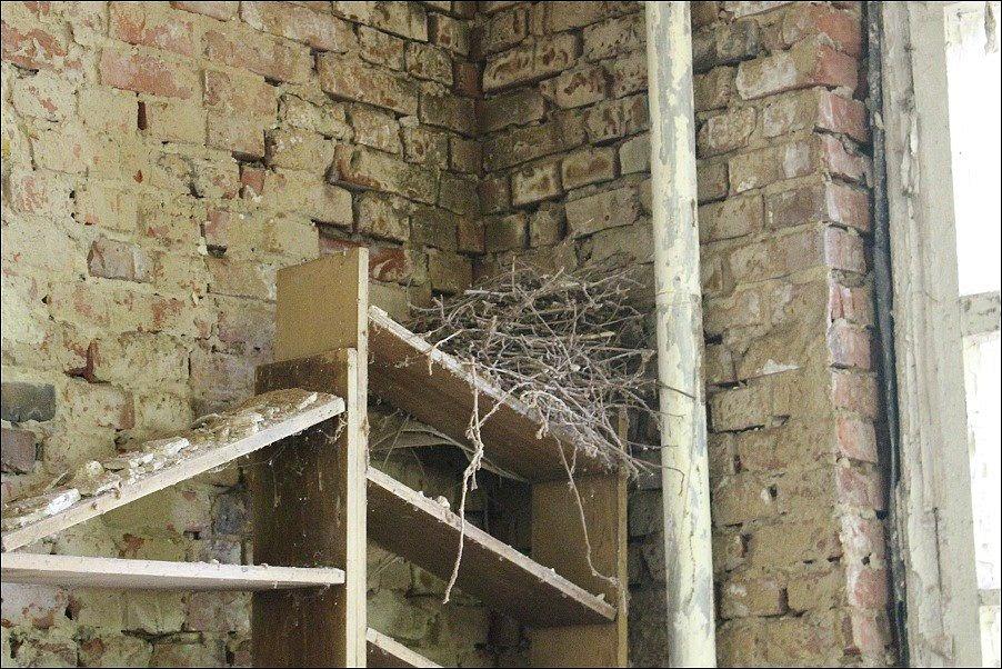 Opuštěný Černobyl