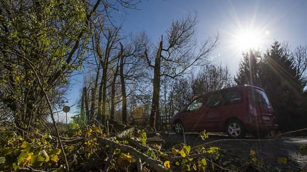 Větve u krajnice na silnici - ilustrační foto