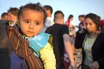 Do aténského přístavu Pireus dnes ráno z východořeckého ostrova Kos připlul trajekt s asi 1300 migranty na palubě. Během dne pak podle pobřežní stráže z dalších řeckých ostrovů připluje na trajektových linkách dalších 600 běženců.