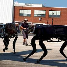 Roboti Denver Dynamics